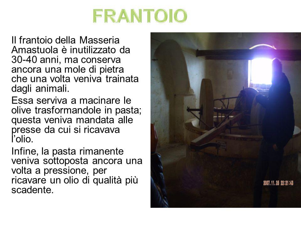 Il frantoio della Masseria Amastuola è inutilizzato da 30-40 anni, ma conserva ancora una mole di pietra che una volta veniva trainata dagli animali.