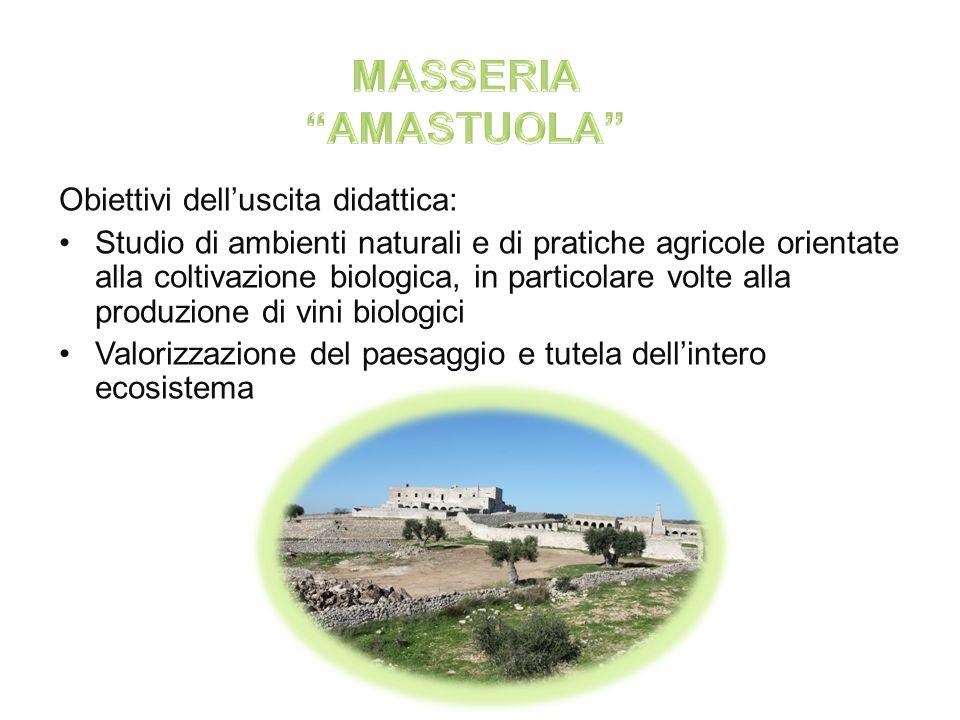 Nella masseria vi è la presenza di locali caratteristici, uno in particolare col pavimento ricoperto di sabbia, muri decorati da grandi archi e soffitti molto alti.