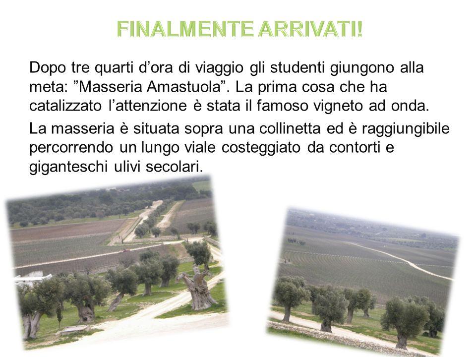 Dopo tre quarti dora di viaggio gli studenti giungono alla meta: Masseria Amastuola.
