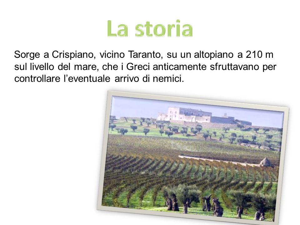 A partire dal 1988, con gli scavi archeologici, Masseria Amastuola è divenuta unarea di grande interesse storico e archeologico.