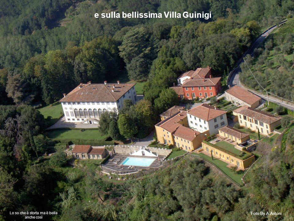e sulla bellissima Villa Guinigi Foto By A.Antoni Lo so che è storta ma è bella anche così