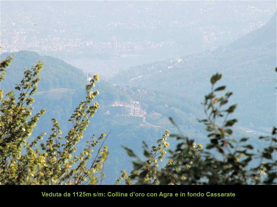 Veduta da 1125m s/m: Collina doro con Agra e in fondo Cassarate