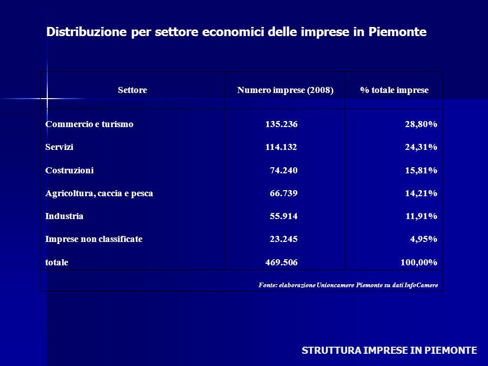 STRUTTURA IMPRESE IN PIEMONTE SettoreNumero imprese (2008)% totale imprese Commercio e turismo 135.23628,80% Servizi 114.13224,31% Costruzioni 74.2401