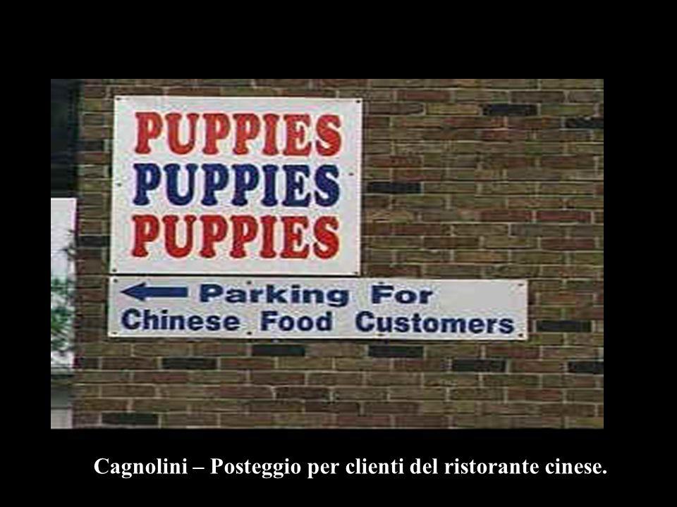 Cagnolini – Posteggio per clienti del ristorante cinese.