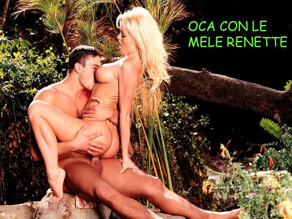 OCA CON LE MELE RENETTE