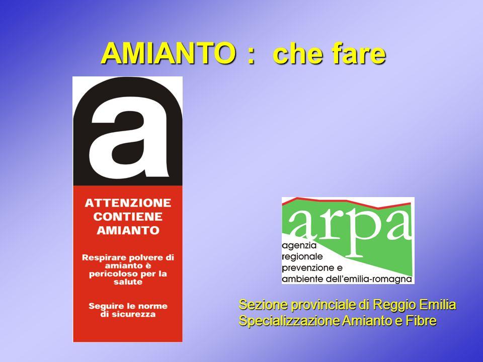 Sezione provinciale di Reggio Emilia Specializzazione Amianto e Fibre AMIANTO : che fare