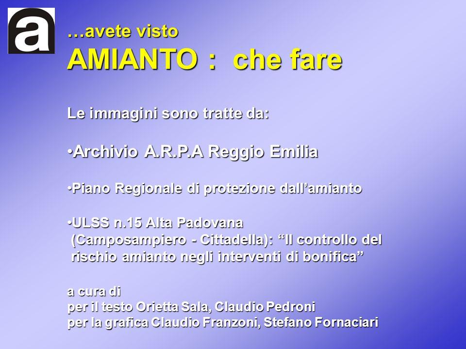 Le immagini sono tratte da: Archivio A.R.P.A Reggio EmiliaArchivio A.R.P.A Reggio Emilia Piano Regionale di protezione dallamiantoPiano Regionale di p