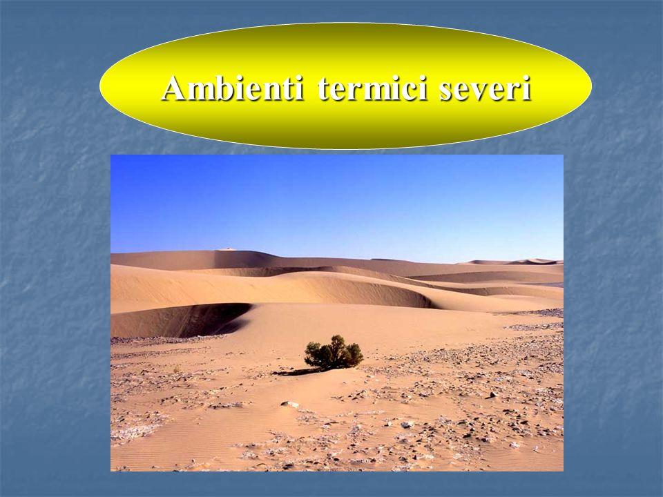 Ambienti termici severi