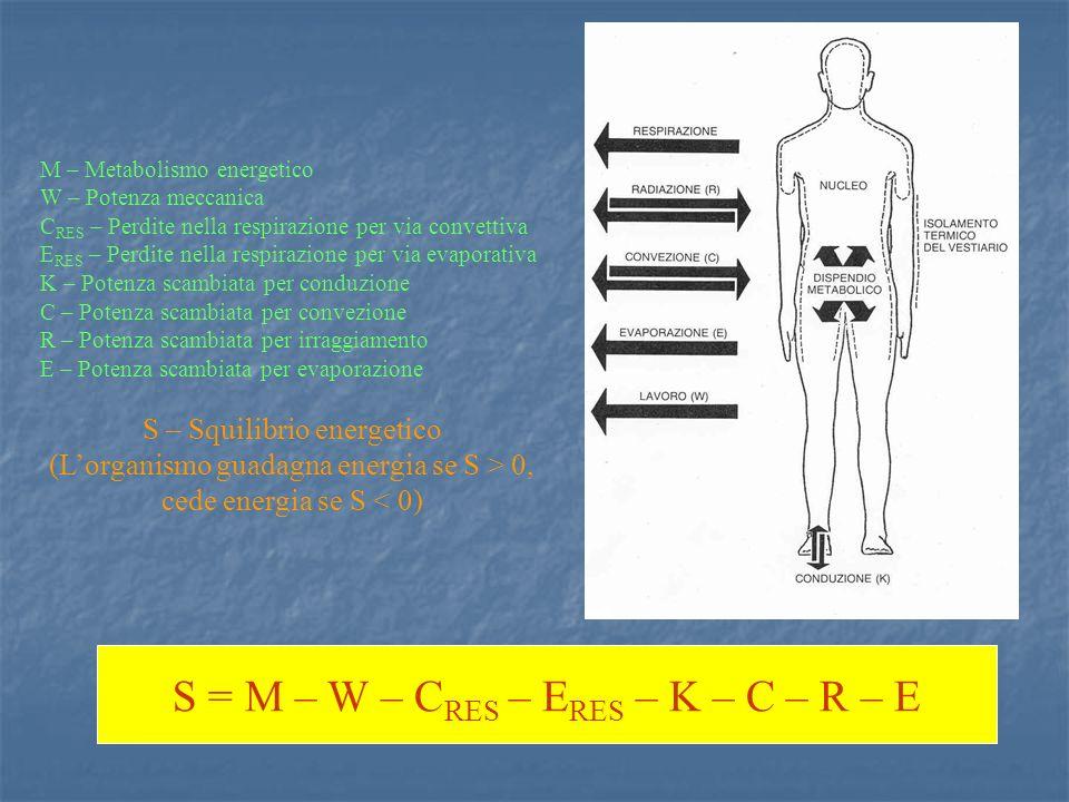 M – Metabolismo energetico W – Potenza meccanica C RES – Perdite nella respirazione per via convettiva E RES – Perdite nella respirazione per via evaporativa K – Potenza scambiata per conduzione C – Potenza scambiata per convezione R – Potenza scambiata per irraggiamento E – Potenza scambiata per evaporazione S – Squilibrio energetico (Lorganismo guadagna energia se S > 0, cede energia se S < 0) S = M – W – C RES – E RES – K – C – R – E