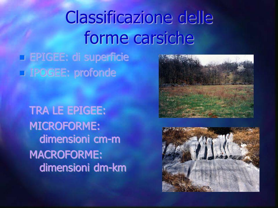 Classificazione delle forme carsiche EPIGEE: di superficie EPIGEE: di superficie IPOGEE: profonde IPOGEE: profonde TRA LE EPIGEE: MICROFORME: dimensio