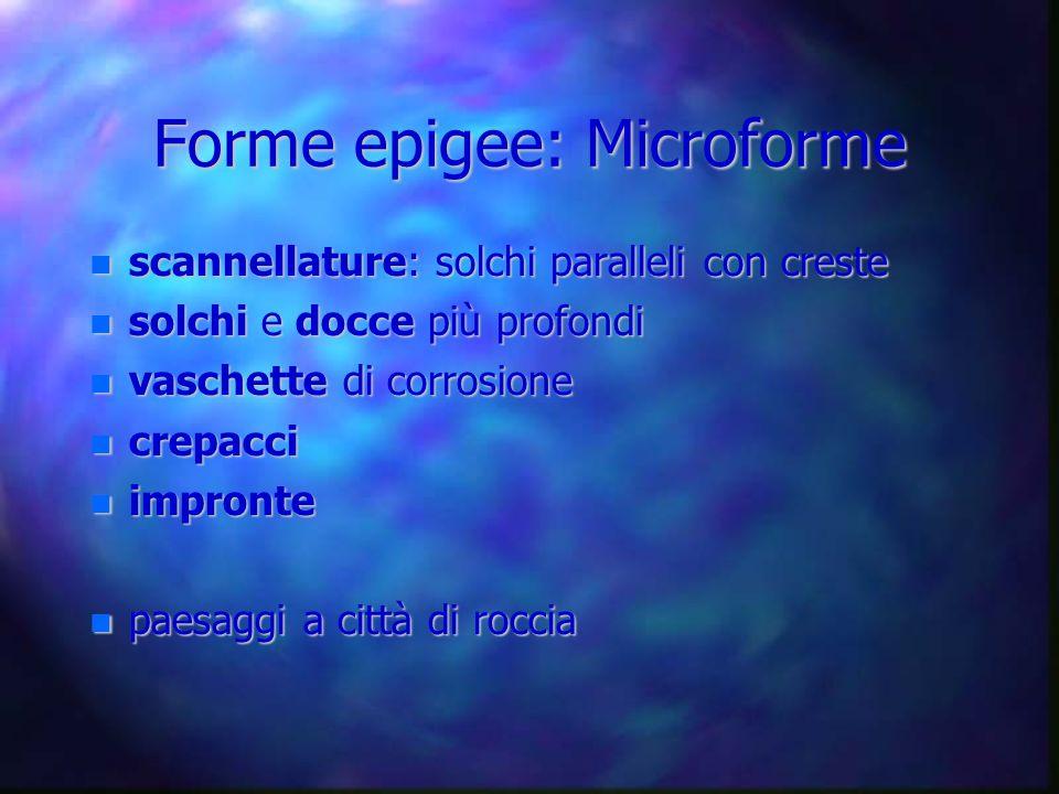 Forme epigee: Microforme scannellature: solchi paralleli con creste scannellature: solchi paralleli con creste solchi e docce più profondi solchi e do