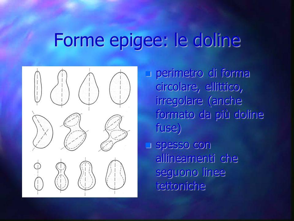 Forme epigee: le doline perimetro di forma circolare, ellittico, irregolare (anche formato da più doline fuse) perimetro di forma circolare, ellittico