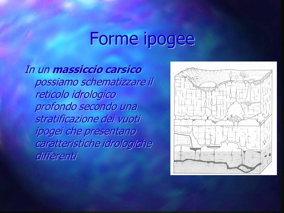 Forme ipogee In un massiccio carsico possiamo schematizzare il reticolo idrologico profondo secondo una stratificazione dei vuoti ipogei che presentan