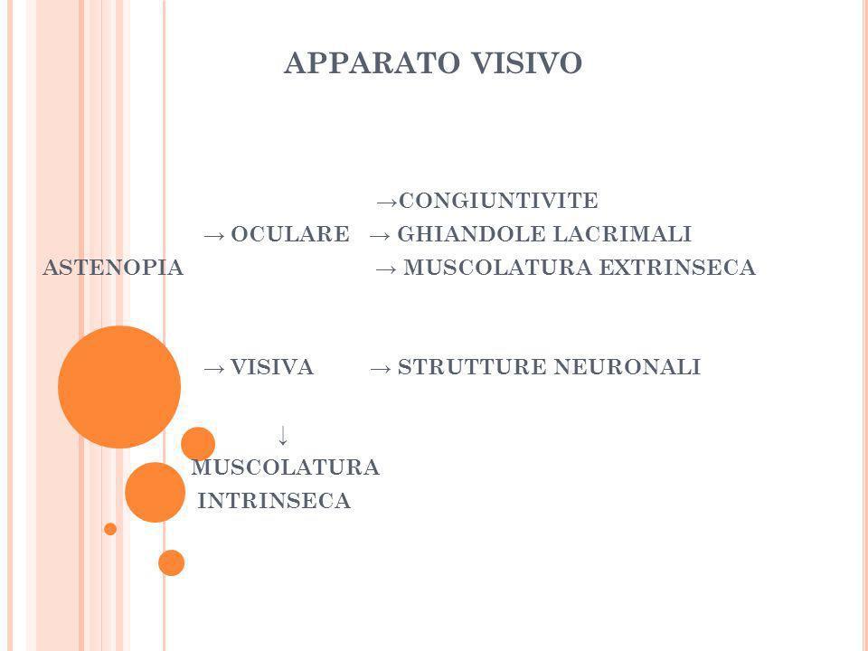 APPARATO VISIVO CONGIUNTIVITE OCULARE GHIANDOLE LACRIMALI ASTENOPIA MUSCOLATURA EXTRINSECA VISIVA STRUTTURE NEURONALI MUSCOLATURA INTRINSECA