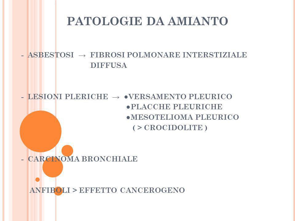 PATOLOGIE DA AMIANTO - ASBESTOSI FIBROSI POLMONARE INTERSTIZIALE DIFFUSA - LESIONI PLERICHE VERSAMENTO PLEURICO PLACCHE PLEURICHE MESOTELIOMA PLEURICO