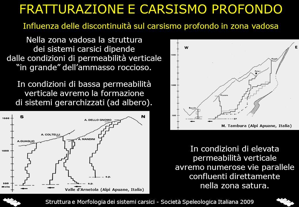 Influenza delle discontinuità sul carsismo profondo in zona vadosa Nella zona vadosa la struttura dei sistemi carsici dipende dalle condizioni di perm