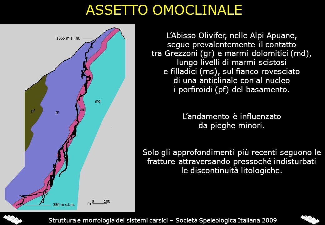 ASSETTO OMOCLINALE Abisso Olivifer (Alpi Apuane) Sistema di Cima Paradiso (Lombardia) LAbisso Olivifer, nelle Alpi Apuane, segue prevalentemente il co