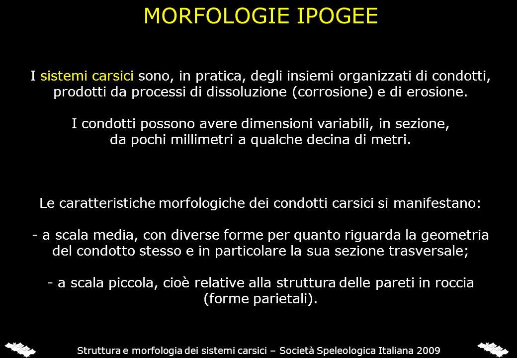 MORFOLOGIE IPOGEE Struttura e morfologia dei sistemi carsici – Società Speleologica Italiana 2009 I sistemi carsici sono, in pratica, degli insiemi or