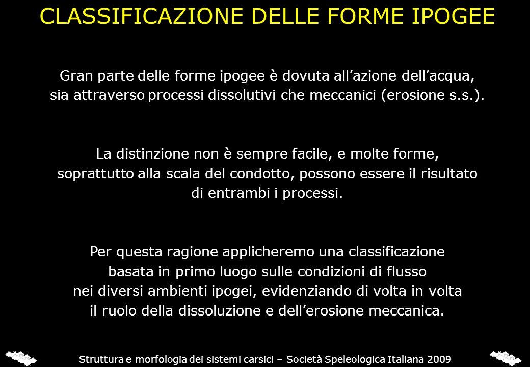 Struttura e morfologia dei sistemi carsici – Società Speleologica Italiana 2009 Gran parte delle forme ipogee è dovuta allazione dellacqua, sia attrav