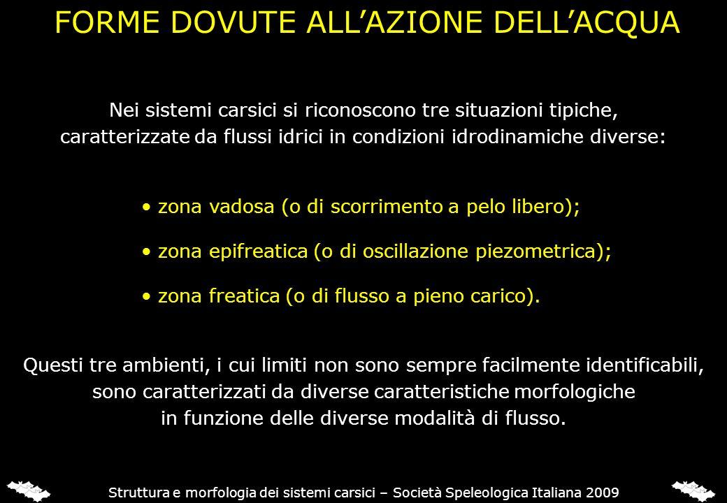 FORME DOVUTE ALLAZIONE DELLACQUA Struttura e morfologia dei sistemi carsici – Società Speleologica Italiana 2009 Nei sistemi carsici si riconoscono tr