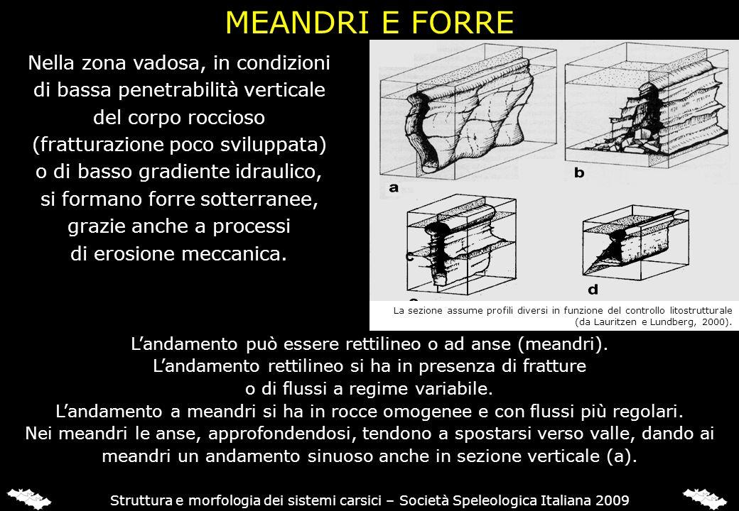 Struttura e morfologia dei sistemi carsici – Società Speleologica Italiana 2009 Nella zona vadosa, in condizioni di bassa penetrabilità verticale del