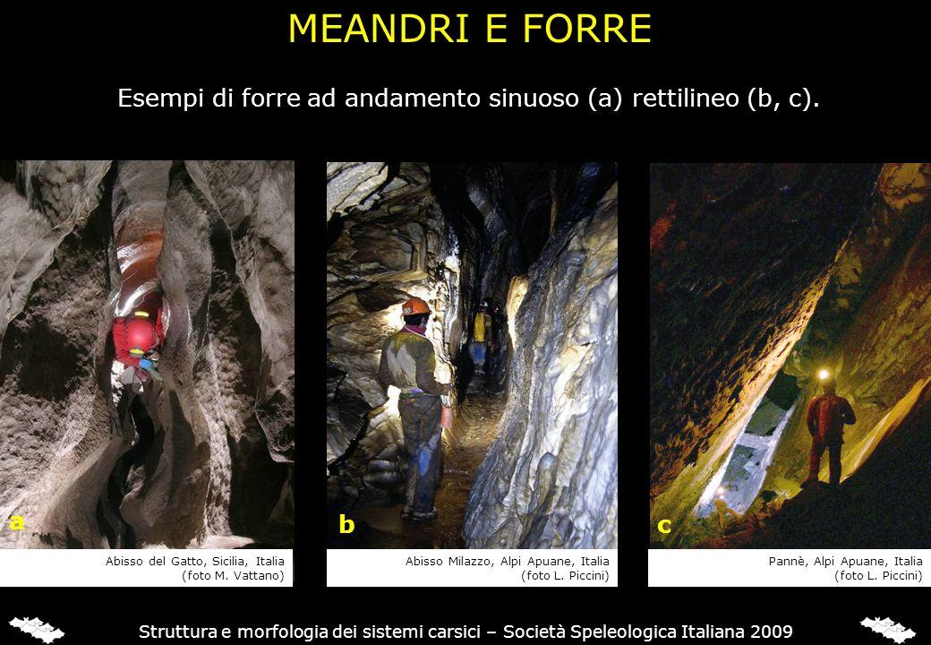 Struttura e morfologia dei sistemi carsici – Società Speleologica Italiana 2009 Esempi di forre ad andamento sinuoso (a) rettilineo (b, c). MEANDRI E