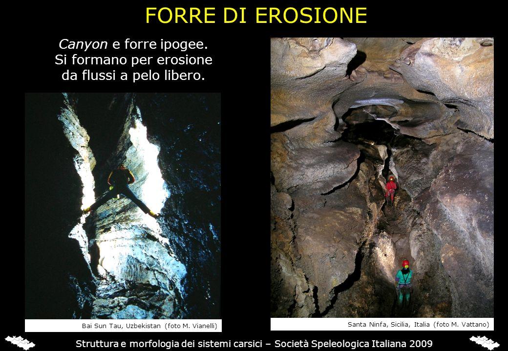FORRE DI EROSIONE Struttura e morfologia dei sistemi carsici – Società Speleologica Italiana 2009 Canyon e forre ipogee. Si formano per erosione da fl