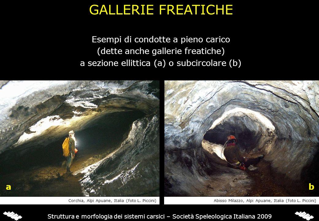 Struttura e morfologia dei sistemi carsici – Società Speleologica Italiana 2009 Esempi di condotte a pieno carico (dette anche gallerie freatiche) a s