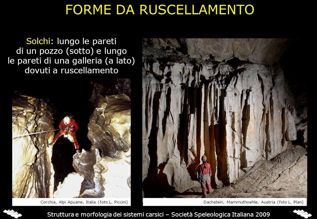 FORME DA RUSCELLAMENTO Struttura e morfologia dei sistemi carsici – Società Speleologica Italiana 2009 Solchi: lungo le pareti di un pozzo (sotto) e l