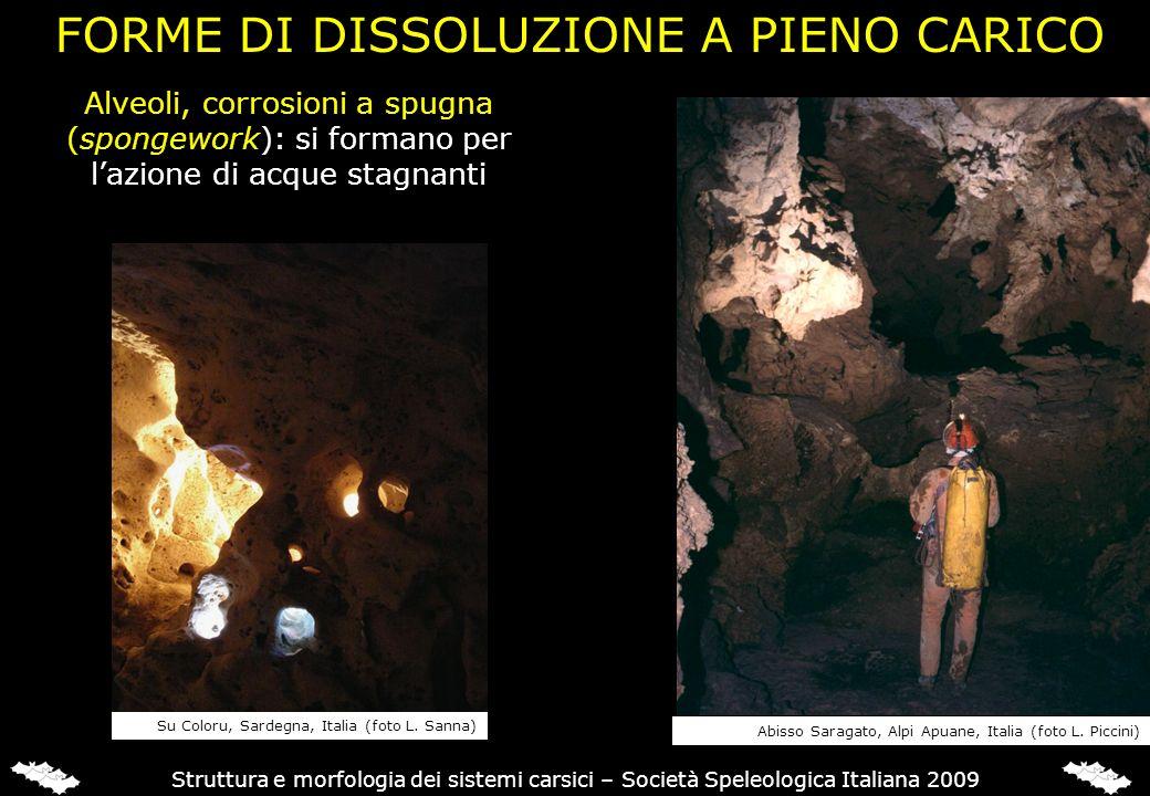 Struttura e morfologia dei sistemi carsici – Società Speleologica Italiana 2009 FORME DI DISSOLUZIONE A PIENO CARICO Abisso Saragato, Alpi Apuane, Ita