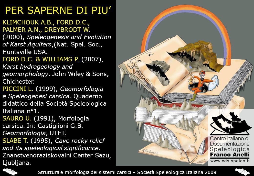 PER SAPERNE DI PIU Struttura e morfologia dei sistemi carsici – Società Speleologica Italiana 2009 KLIMCHOUK A.B., FORD D.C., PALMER A.N., DREYBRODT W