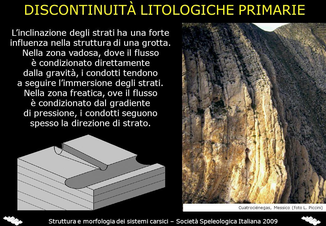 Linclinazione degli strati ha una forte influenza nella struttura di una grotta. Nella zona vadosa, dove il flusso è condizionato direttamente dalla g