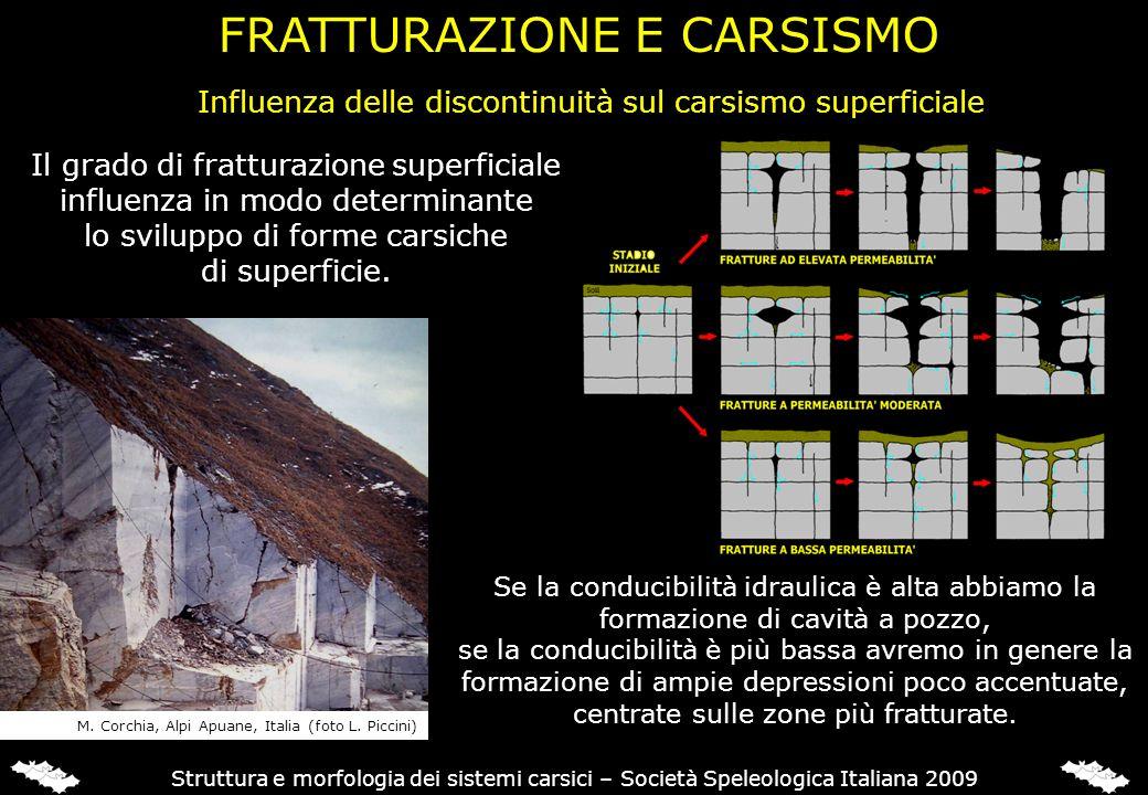 Influenza delle discontinuità sul carsismo superficiale Struttura e morfologia dei sistemi carsici – Società Speleologica Italiana 2009 Se la conducib