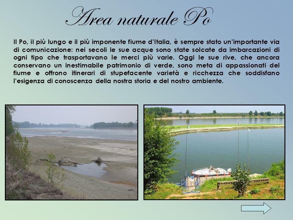 Il Po, il più lungo e il più imponente fiume dItalia, è sempre stato unimportante via di comunicazione: nei secoli le sue acque sono state solcate da