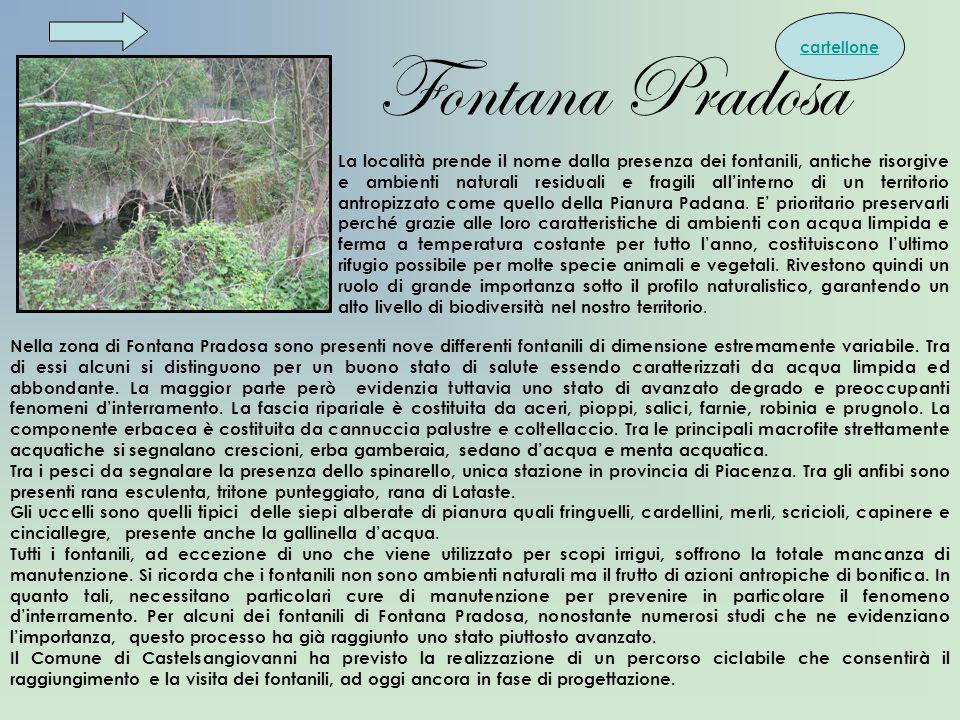Fontana Pradosa Nella zona di Fontana Pradosa sono presenti nove differenti fontanili di dimensione estremamente variabile. Tra di essi alcuni si dist