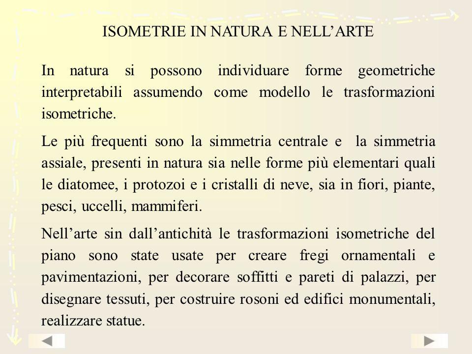 ISOMETRIE IN NATURA E NELLARTE In natura si possono individuare forme geometriche interpretabili assumendo come modello le trasformazioni isometriche.