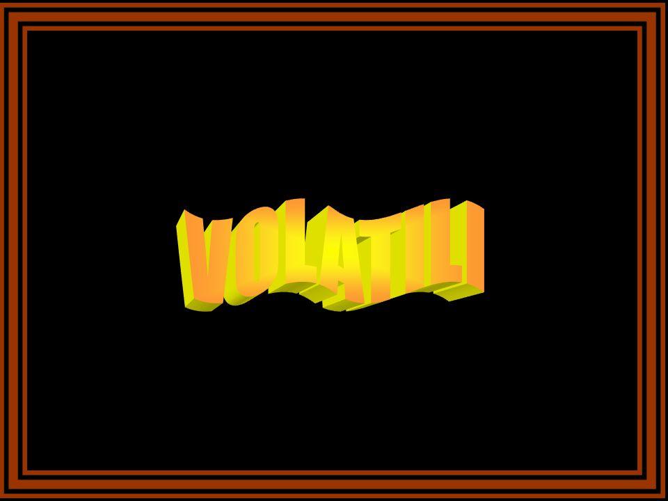 La Nutria o castorino, è inserita nellelenco delle 100 specie più dannose al mondo perché con le sue tane danneggia le dighe, i sistemi di irrigazione e fa irruzione nelle risaie e altre colture, nutrendosi di radici, tuberi e rizomi.