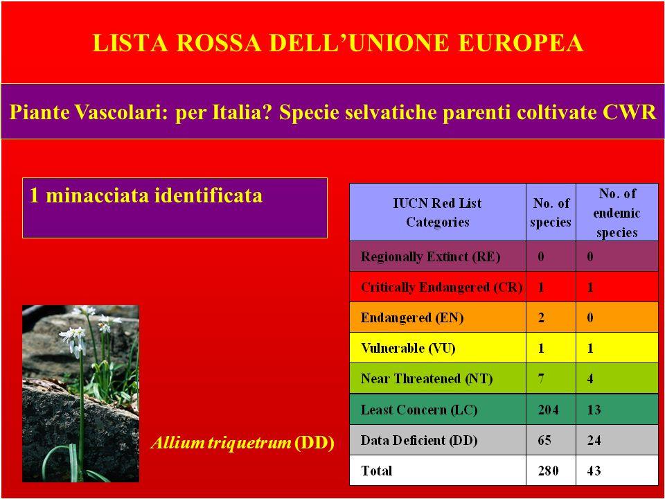 LISTA ROSSA DELLUNIONE EUROPEA Piante Vascolari: per Italia.