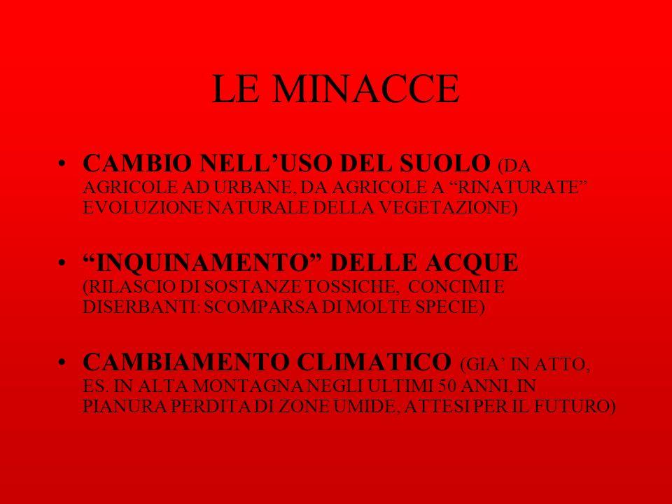 LE MINACCE CAMBIO NELLUSO DEL SUOLO (DA AGRICOLE AD URBANE, DA AGRICOLE A RINATURATE EVOLUZIONE NATURALE DELLA VEGETAZIONE) INQUINAMENTO DELLE ACQUE (RILASCIO DI SOSTANZE TOSSICHE, CONCIMI E DISERBANTI: SCOMPARSA DI MOLTE SPECIE) CAMBIAMENTO CLIMATICO (GIA IN ATTO, ES.