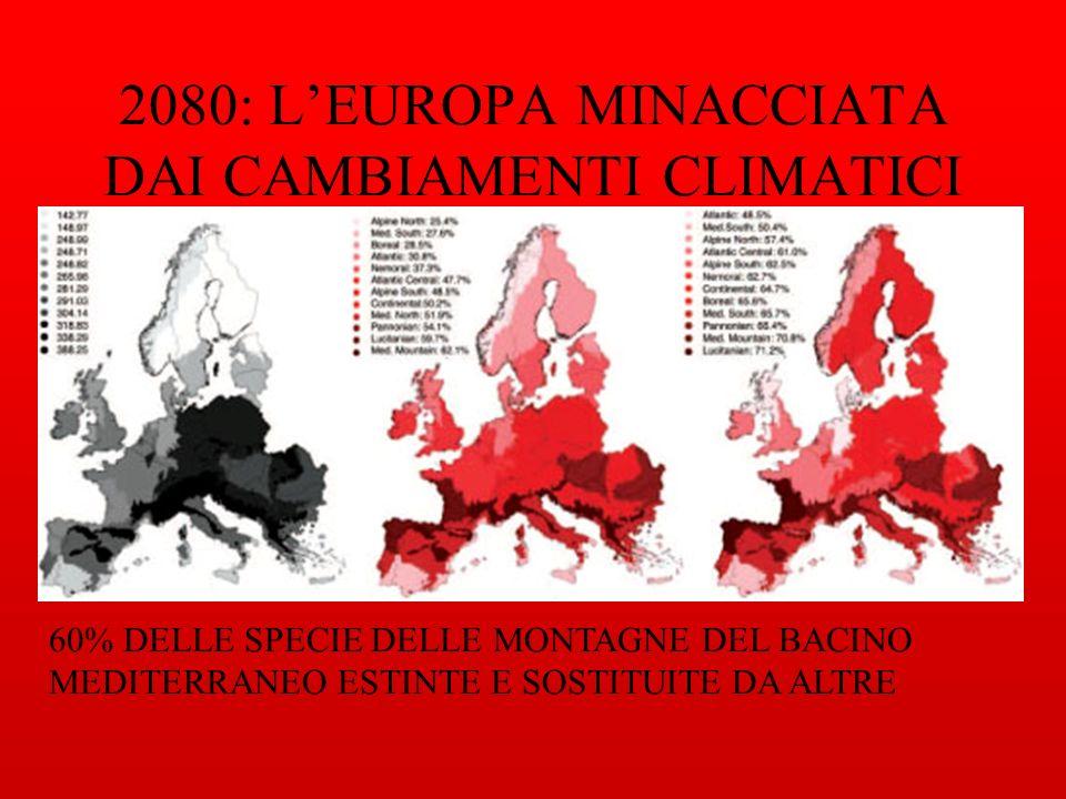 2080: LEUROPA MINACCIATA DAI CAMBIAMENTI CLIMATICI 60% DELLE SPECIE DELLE MONTAGNE DEL BACINO MEDITERRANEO ESTINTE E SOSTITUITE DA ALTRE