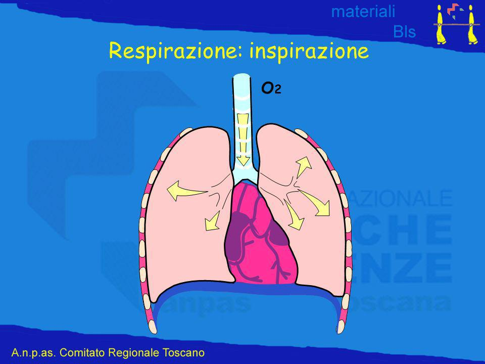 Respirazione: inspirazione O2O2