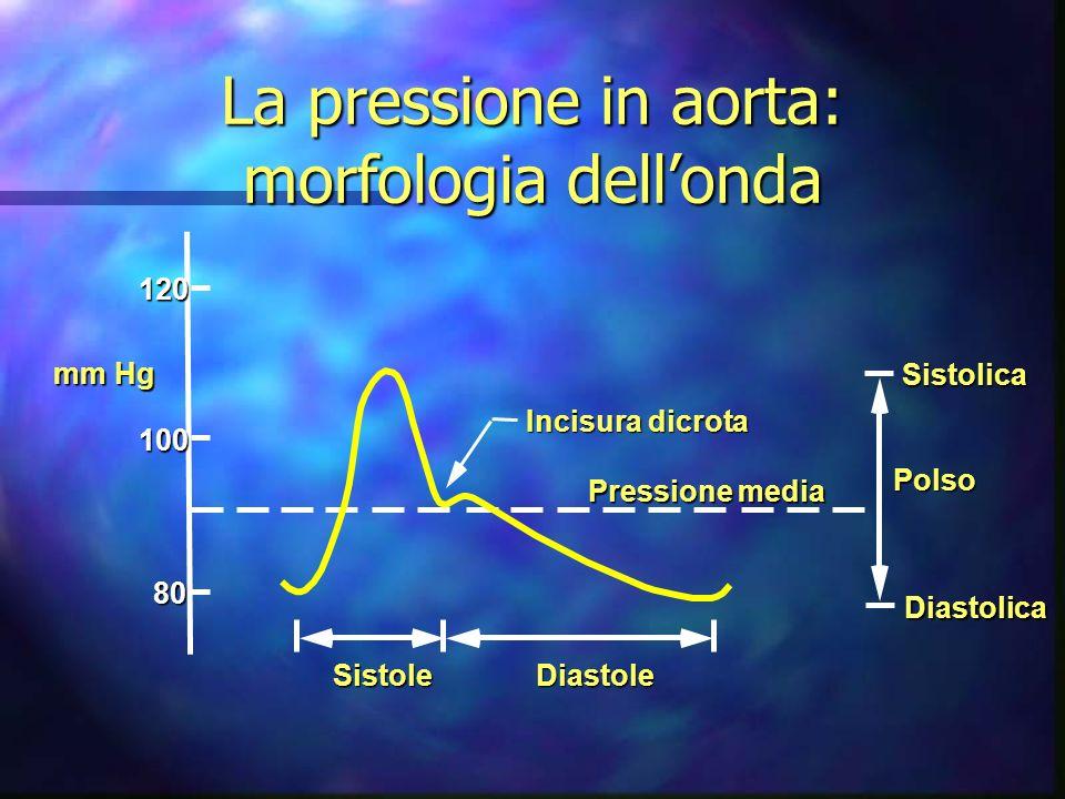 Incisura dicrota Pressione media Sistolica Polso Diastolica120100 80 SistoleDiastole mm Hg La pressione in aorta: morfologia dellonda