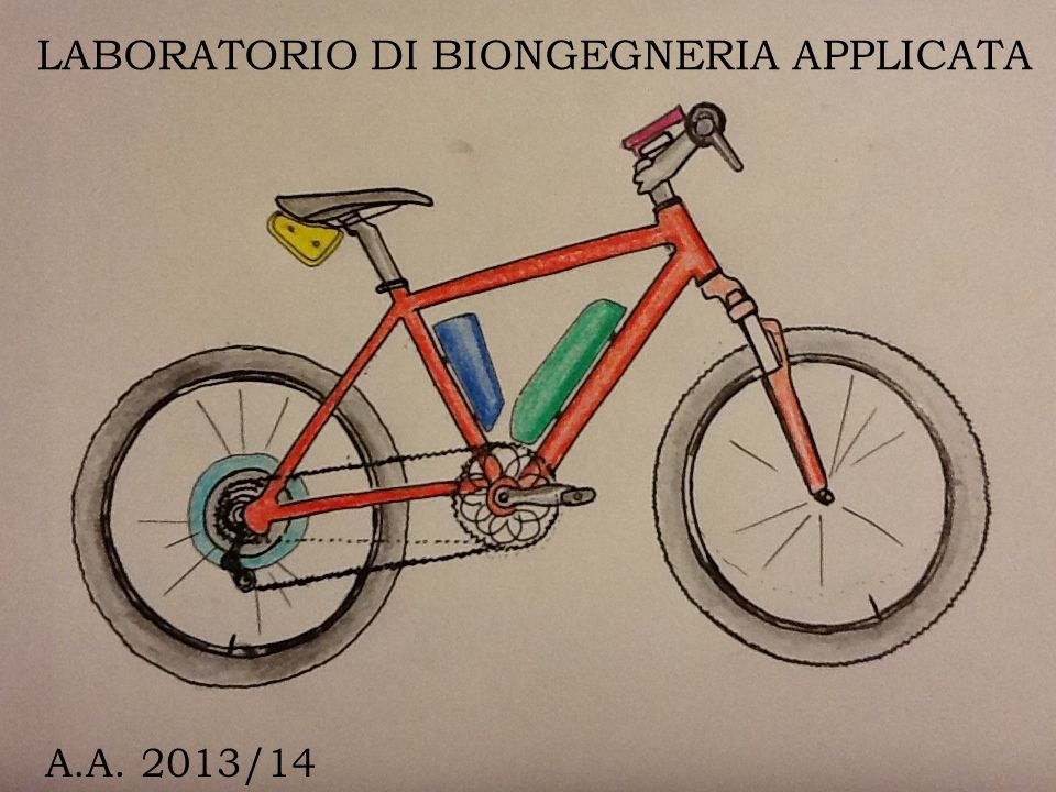 LABORATORIO DI BIONGEGNERIA APPLICATA A.A. 2013/14
