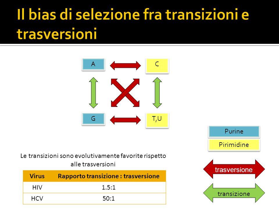 A A G G C C T,U Purine Pirimidine trasversione transizione Le transizioni sono evolutivamente favorite rispetto alle trasversioni VirusRapporto transi