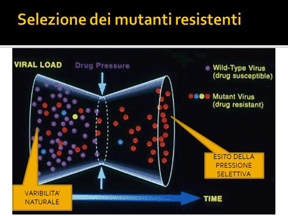 La barriera genetica esprime lentità di variazione richiesta perché il virus acquisisca resistenza Numero di mutazioni necessarie Tipo di mutazioni Impatto che quelle mutazioni esercitano sulla capacità di replicazione del virus (fitness) Devono essere selezionate una o più mutazioni perché il virus non sia bloccato dal farmaco (fenotipo resistente) Devono essere selezionate una o più mutazioni perché il virus non sia bloccato dal farmaco (fenotipo resistente)