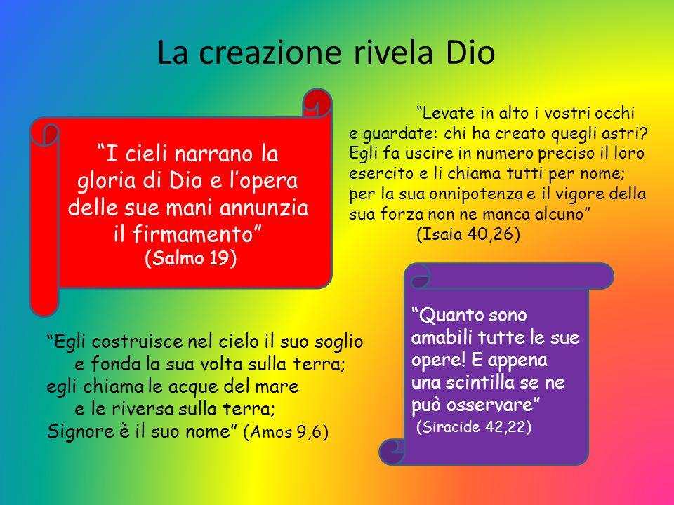 La creazione rivela Dio I cieli narrano la gloria di Dio e lopera delle sue mani annunzia il firmamento (Salmo 19) Quanto sono amabili tutte le sue opere.