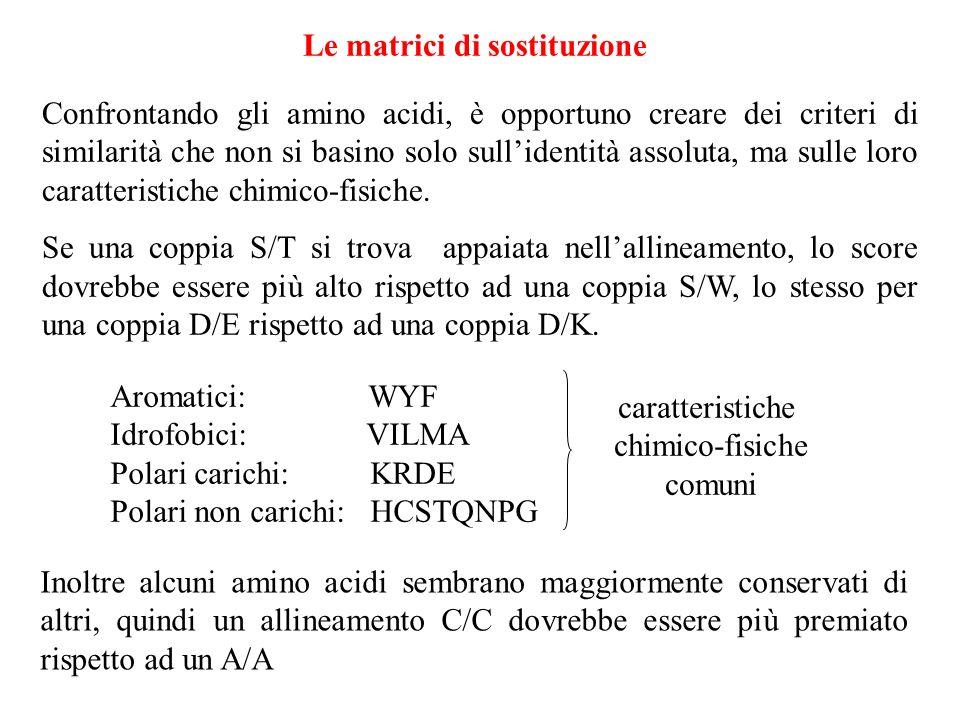 Le matrici di sostituzione Confrontando gli amino acidi, è opportuno creare dei criteri di similarità che non si basino solo sullidentità assoluta, ma