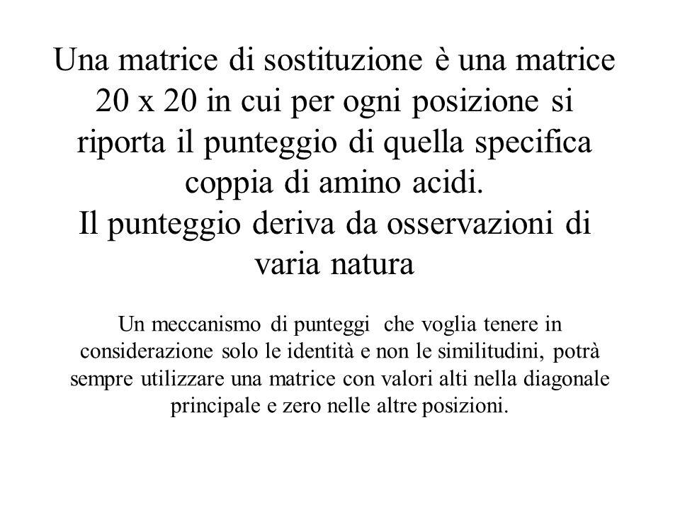 Una matrice di sostituzione è una matrice 20 x 20 in cui per ogni posizione si riporta il punteggio di quella specifica coppia di amino acidi. Il punt