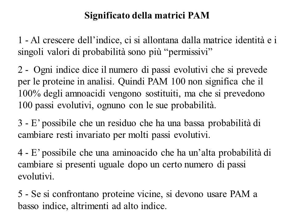 Significato della matrici PAM 1 - Al crescere dellindice, ci si allontana dalla matrice identità e i singoli valori di probabilità sono più permissivi