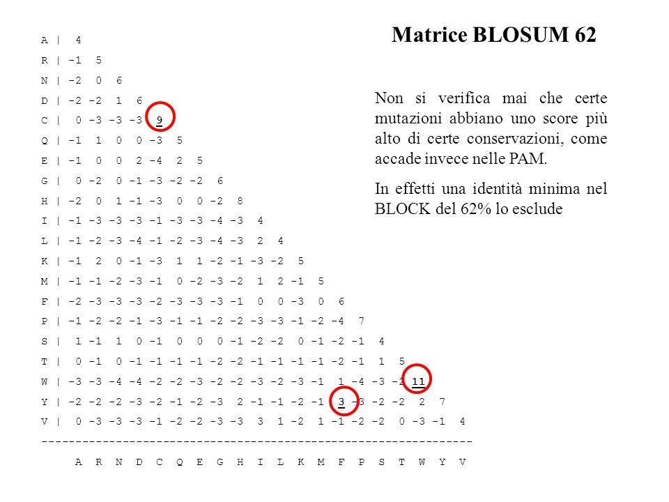 Matrice BLOSUM 62 A | 4 R | -1 5 N | -2 0 6 D | -2 -2 1 6 C | 0 -3 -3 -3 9 Q | -1 1 0 0 -3 5 E | -1 0 0 2 -4 2 5 G | 0 -2 0 -1 -3 -2 -2 6 H | -2 0 1 -
